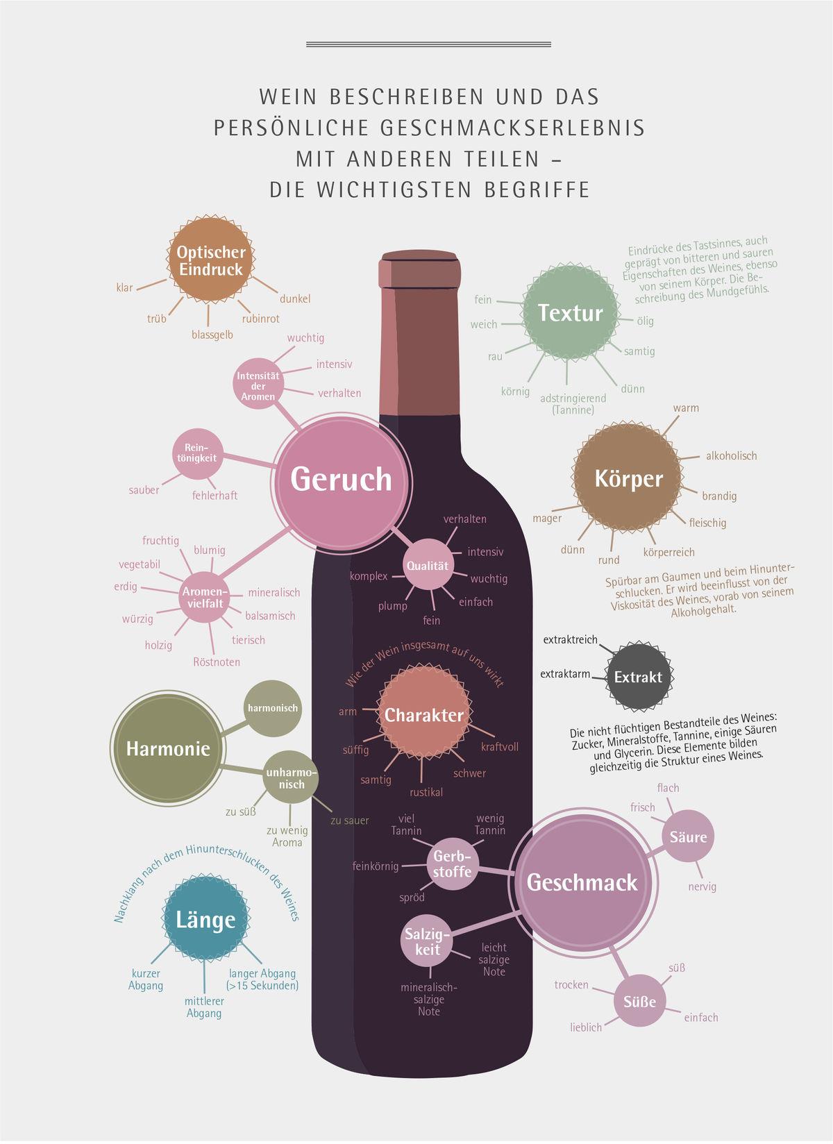 Dish 2019 Seite 39 Know How Wein Grafik